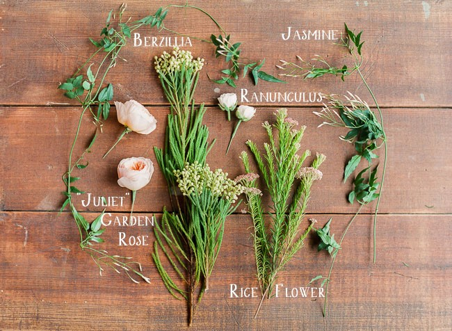 photos of flower types on a table