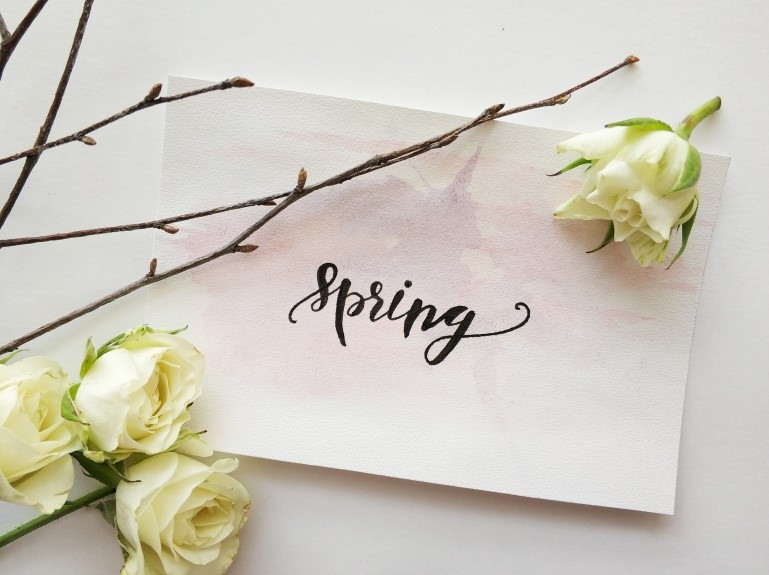 photo of the words spring written